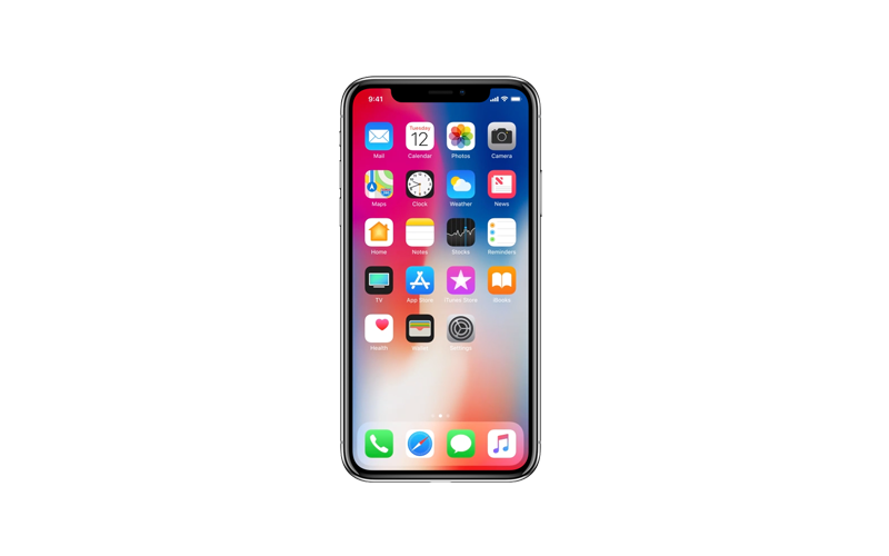 An iPhone X